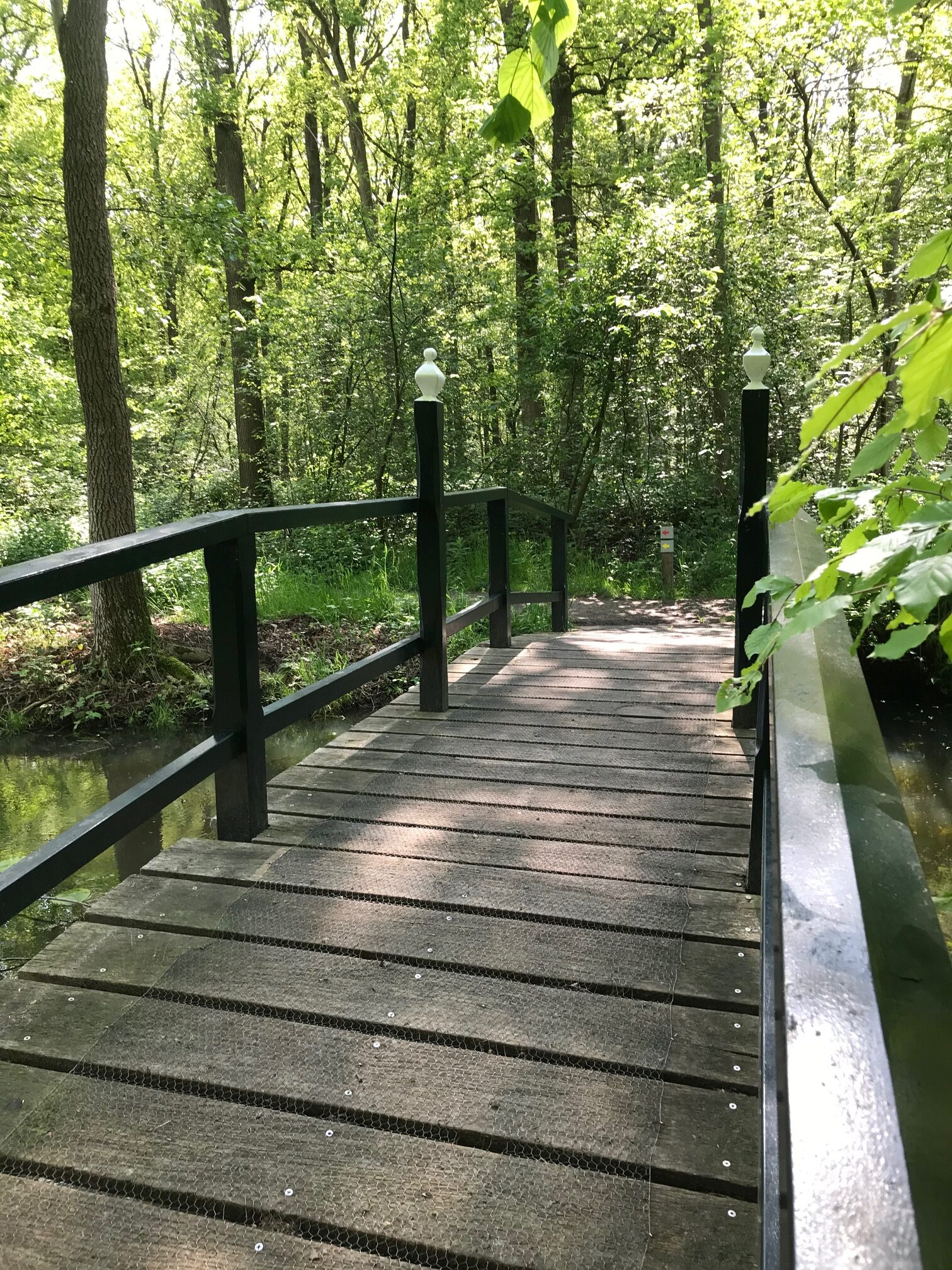 groen met brug